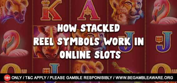 How Stacked Reel Symbols Work in Online Slots