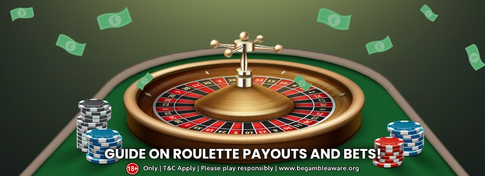 Your all-inclusive guide on Roulette payouts and bets!