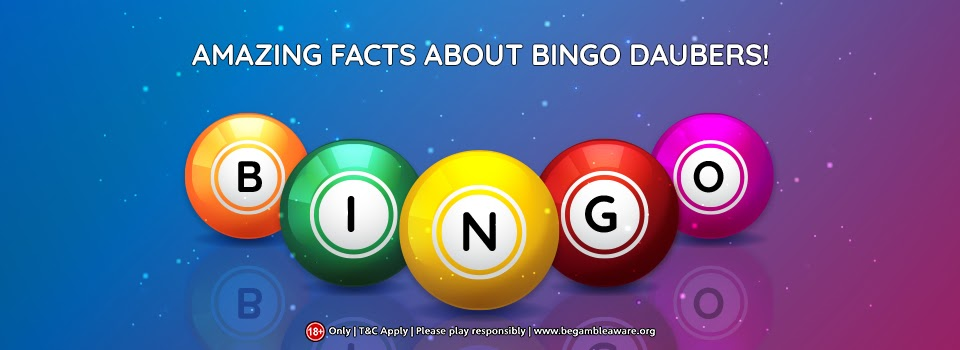 10 amazing facts that you should know about Bingo Daubers!